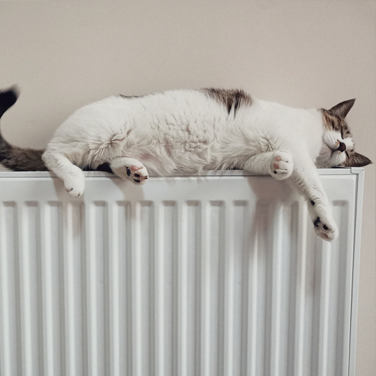 Everything You Need To Know About Balancing A Radiator