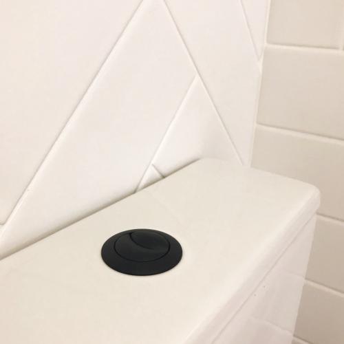 Flush Button