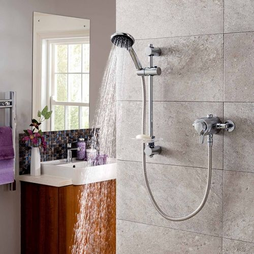 Triton Eden Eco Concentric Mixer Shower (19412)
